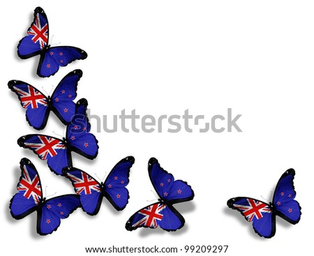 New Zealand flag butterflies, isolated on white background - stock photo