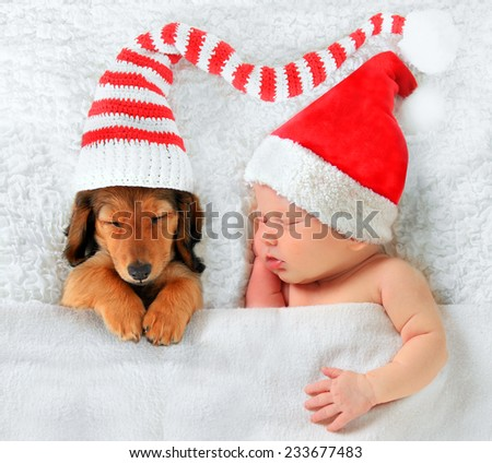 Newborn baby and puppy wearing Christmas Santa hats.  - stock photo