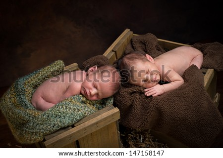 Newborn fraternal twin boys asleep on blankets in wooden crates. - stock photo