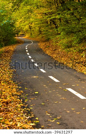 Newly built road in colorful autumn forest. - stock photo