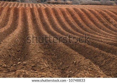 Newly ploughed field ready for new crops - stock photo