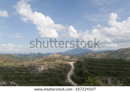 Newly Replant Oil Palm Plantation On The Hill With Clouds And Blue Sky - stock photo