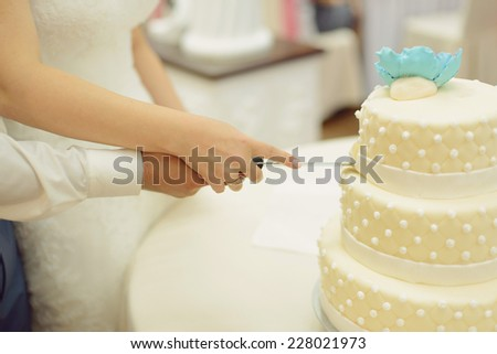 newlyweds cutting cake with blue flower - stock photo