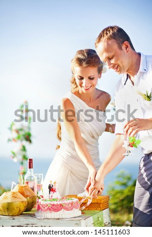 newlyweds cutting the wedding cake (soft focus on the eyes of bride and groom) - stock photo