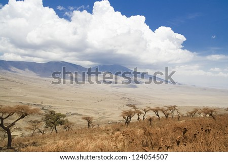ngorongoro national park Africa - stock photo
