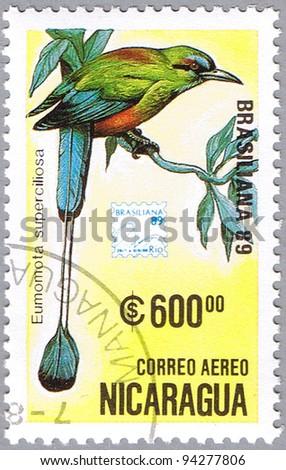 NICARAGUA - CIRCA 1989: A stamp printed in Nicaragua shows Eumomota superciliosa or Turquoise-browed Motmot or Torogoz, series, circa 1989 - stock photo