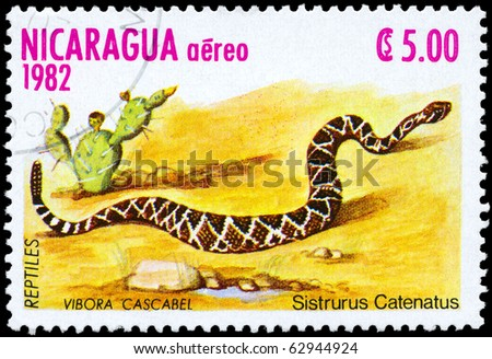 "NICARAGUA - CIRCA 1982: A Stamp printed in NICARAGUA shows the image of a Massasauga with the description ""Sistrurus catenatus"" from the series ""Reptiles"", circa 1982 - stock photo"