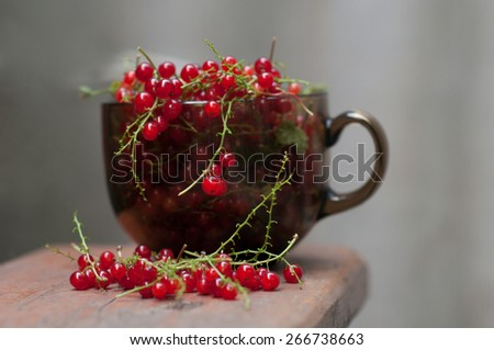 nice and tasty red currants in the brown glass cup - stock photo