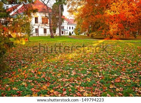 Nice autumnal scene - stock photo