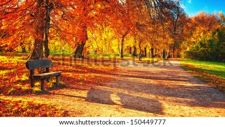 Nice autumnal scene  - stock photo