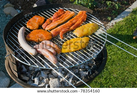 Nice barbecue with spiced meat - stock photo