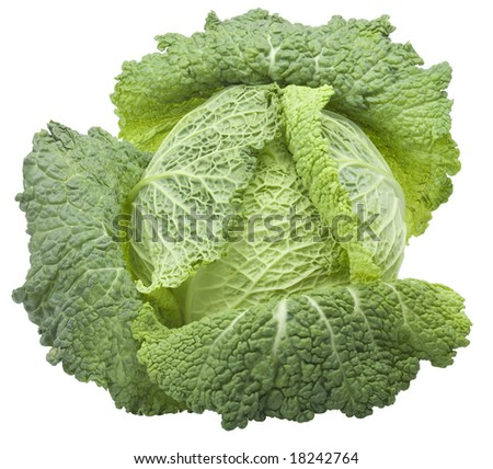 nice fresh green cabbage isolated over white with clipping path - stock photo