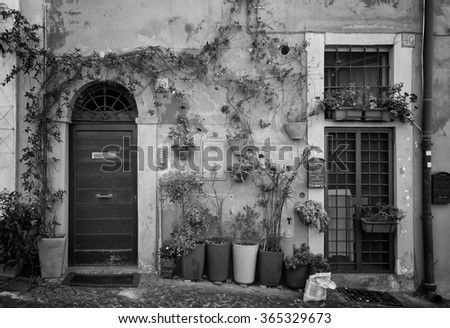 Nice front door with flowers in a pot in Roma, Italy in black and white.  Image taken from the street. - stock photo