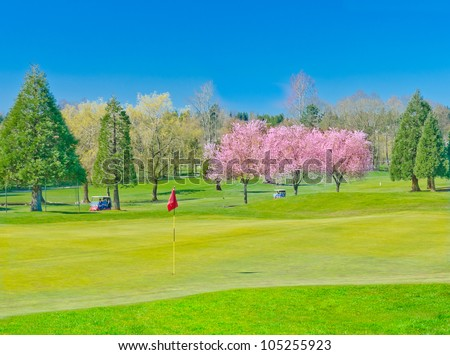 Nice looking golf course with two carts and red flag - stock photo