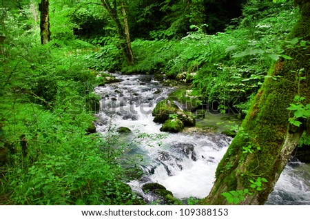 nice mountain stream with green stones and wood - stock photo