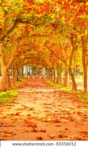 Nice pathway in the city at autumn - stock photo