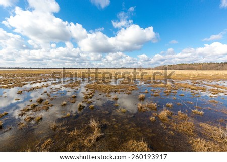 Nice spring day on bog under clouds in sky - stock photo
