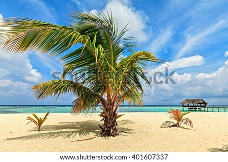 Nice tropical beach, Maldives, The Indian Ocean - stock photo