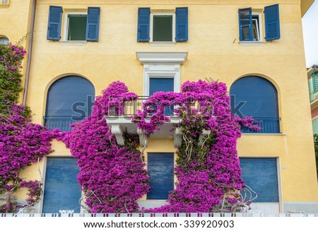 Nice window at an apartment building in Monterosso, Italy. Residential outdoor landscape. - stock photo