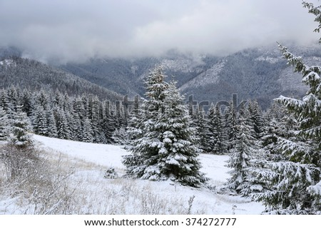 nice winter scene in mountains - stock photo