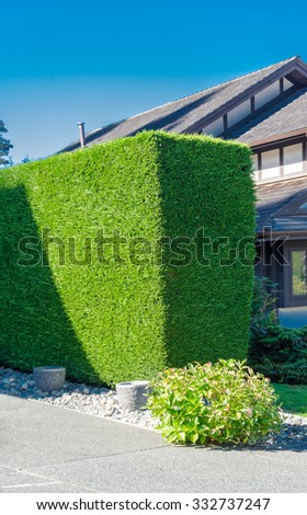 Nicely trimmed bushes, green fence in front of the house, front yard. Landscape design. Vertical. - stock photo
