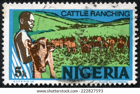 NIGERIA - CIRCA 1973: stamp printed by Nigeria, shows young nigerian, holding a calf, cattle ranching, circa 1973 - stock photo