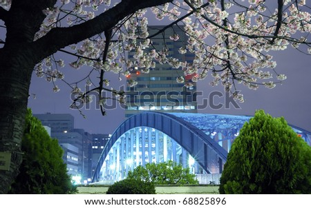 night city scenery with blossom cherry branch over metallic Eitai bridge in Tokyo Metropolis; focus on tree branches - stock photo