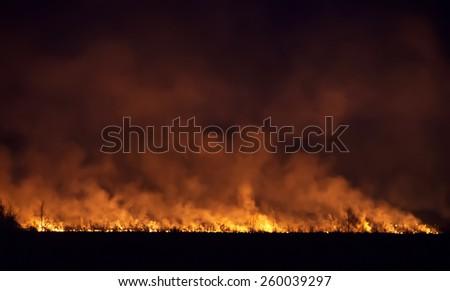 Night fire in a field. - stock photo