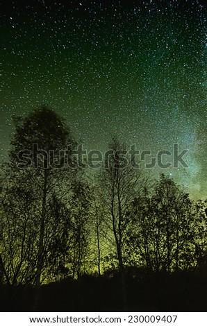 Night green sky with lot of shiny stars, many trees are at front - stock photo