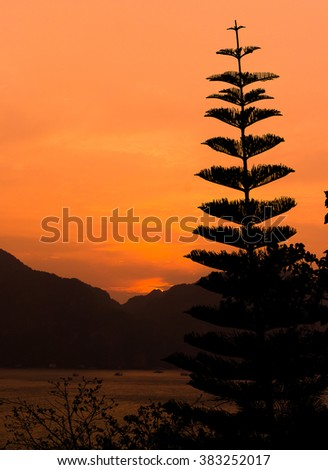 Night is Coming Setting Sun  - stock photo