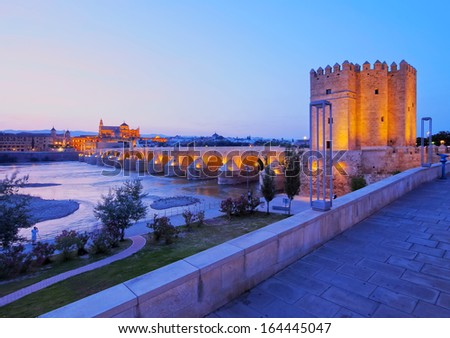 Night view of Mezquita-Catedral and Puente Romano - Mosque-Cathedral and the Roman Bridge in Cordoba, Andalusia, Spain - stock photo