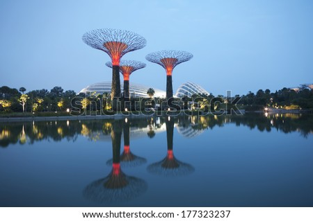 Night view of the Supertree Grove in the Garden by the Bay in Singapore. - stock photo