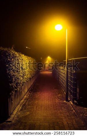 Night walk in a foggy city park alley illuminated by street lights (diffused, toned). Dreamy cityscape.  - stock photo