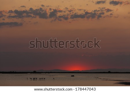nightfall in Camargue, Provence, France - stock photo