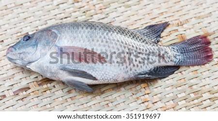 Nile tilapia fish on the wooden floor - stock photo
