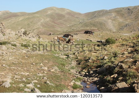 Nomad - stock photo