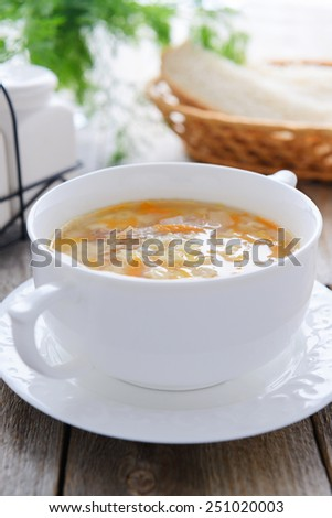Noodle soup from chicken broth and homemade noodle - stock photo