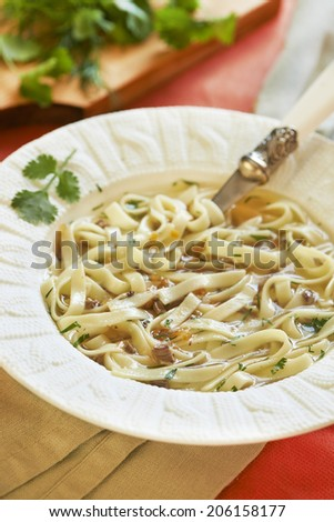 Noodle soup with turkey hearts - stock photo