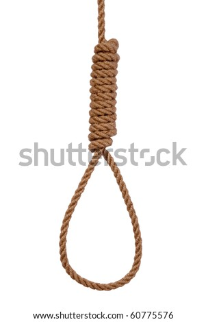 Noose isolated on white - stock photo