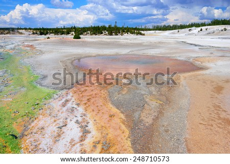 Norris Geyser Basin in Yellowstone National Park, Wyoming - stock photo
