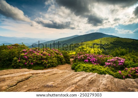 North Carolina Appalachian Trail Spring Scenic Mountains Landscape hiking in the Blue Ridge Mountains of Western NC and Eastern Tennessee - stock photo