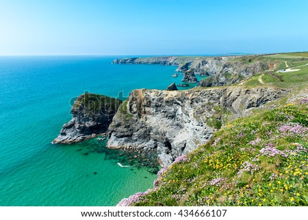 North Cornwall Coast. Pendarves Head and Island, with the Bedruthan Steps beach beyond.  Taken from Carnewas Point. The clifftop flowers are kidney vetch (yellow) and Thrift or Sea Pinks. - stock photo