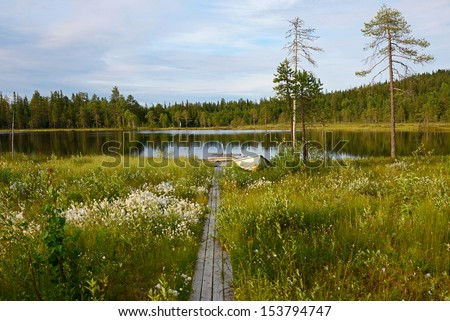 Northern landscape. Trail through swamp to lake - stock photo