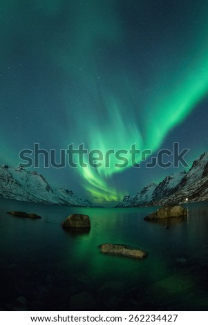 Northern Lights above coast in Ersfjordbotn, Norway - stock photo
