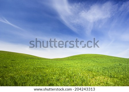 Northern Poland./ Green fields. - stock photo