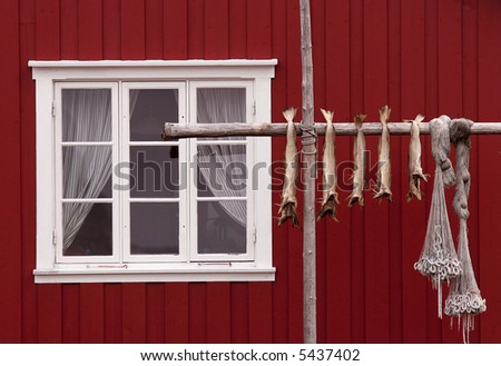 Norwegian house, stockfishes and  fishing nets - stock photo