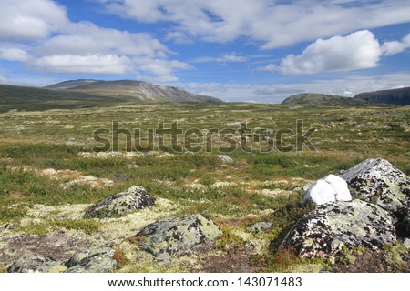 Norwegian landscape typical of the country with extensive plateaus and small villages with wooden cabins Arctic tundra with mosses and lichens Norway national park - stock photo