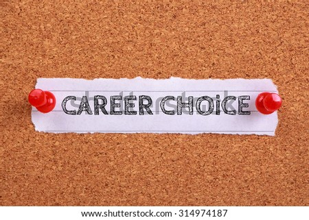 career choice essay career choice fair price essays