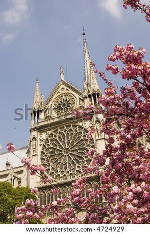 Notre Dame - stock photo