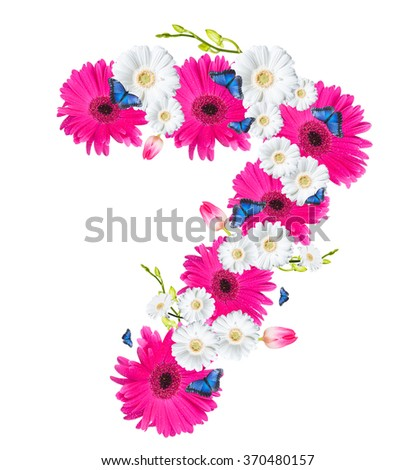 Number 7, flower isolated on white background. Gerber, tulips and butterfly  - stock photo